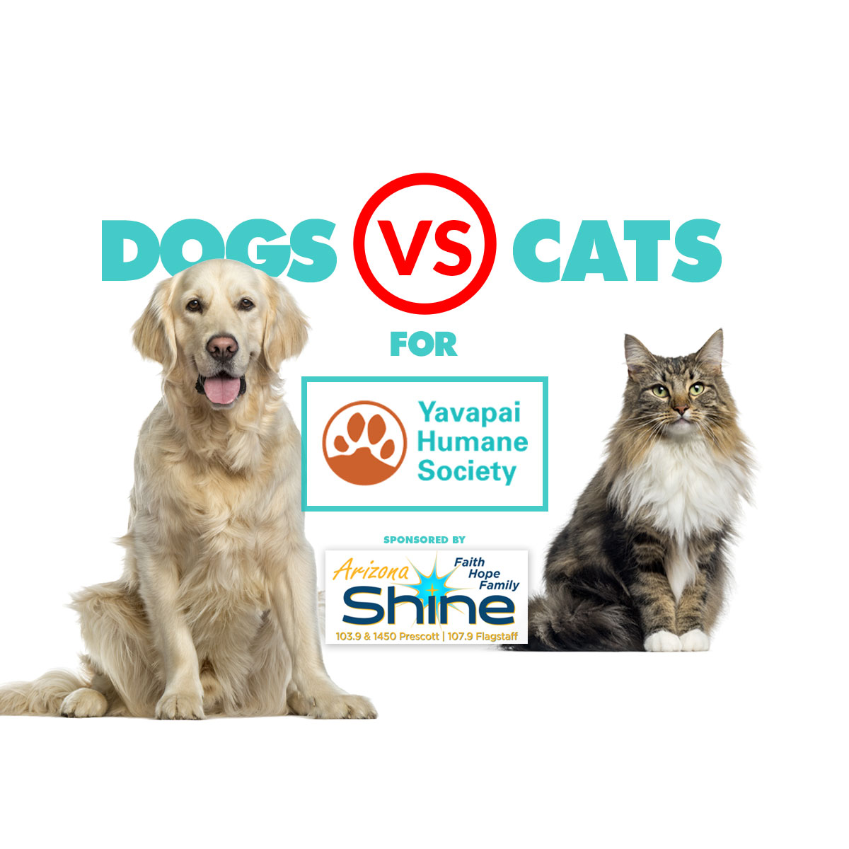 Calling all cat and dog lovers!